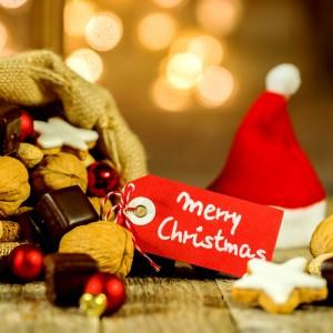 Eichkater wuenscht Frohe Weihnachten